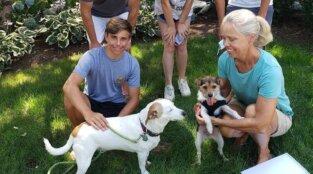 PETA's Local Work July-September 2020