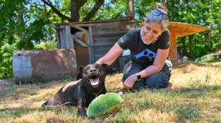 PETA's Local Work April-June 2021
