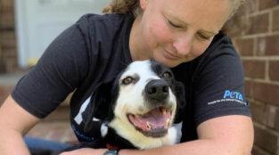 PETA's Local Work July-September 2021